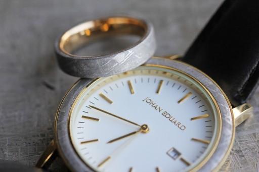 Johan Eduard Meteorite Watch