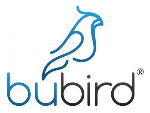 Bubird Straws Has Passed ISO 9001 Quality Management Standard