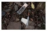Abandoned heroin syringe. Photo courtesy of Thomas Martinsen