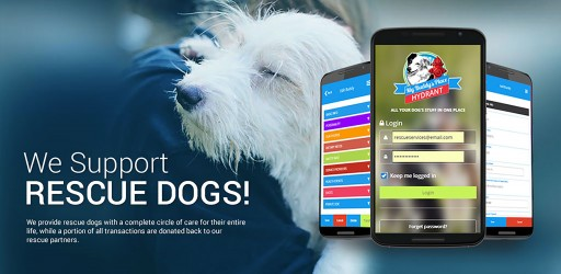 The Hydrant App From My Buddy's Place, the First Complete Care Application for Rescue Dogs