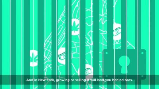 Mike Tolkin on legalizing marijuana in NYC