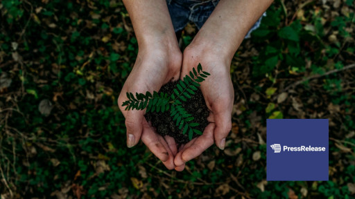 Sustainability Is a Growing Part of Business Success; Share Eco-Friendly Initiatives With PressRelease.com