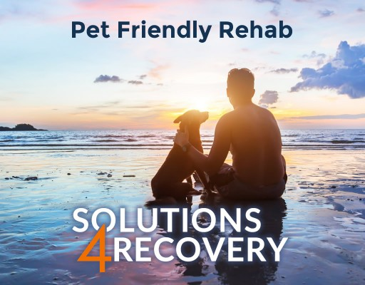 Addiction and Dual Diagnosis Treatment Program Now Offering Pet Friendly Rehab Options