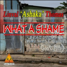 What A Shame Cover Art