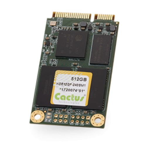 Cactus Technologies Releases 512GB MLC mSATA and 256GB pSLC mSATA