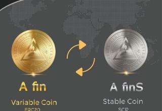 Afin Coin Co-Blockchain Demo