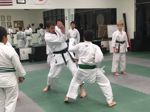 Nashville Wado Karate School Sticking With Greatmats Martial Arts Mats