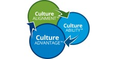 Three A's in the Culture Lifecycle