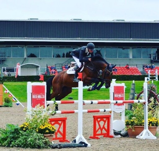 Precision Joint Solutions International Premiers All-in-One Leg Support Supplement at the Royal Dublin Horse Show August 9-13