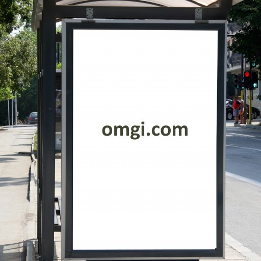 OMGI Dot COM Premium Domain is Up for Sale for the First Time Since 1996