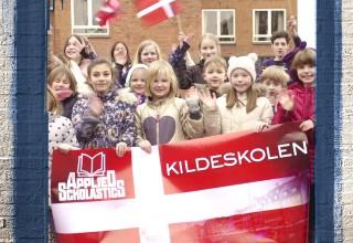 Functional illiteracy in Denmark