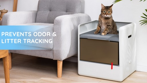 Poop Cube Arrives! A Modern Cat Litter Box That Minimizes Mess in a Modern Way