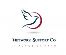 Network Support Co. logo