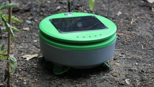 Tertill, the Weed-Killing Robot, Smashes Kickstarter Goal