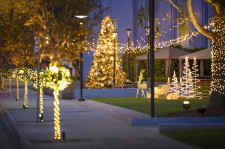 Magical holiday lights on L. Ron Hubbard Way in Los Angeles