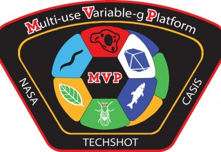 Payload Patch for the Techshot Multi-use Variable-gravity Platform