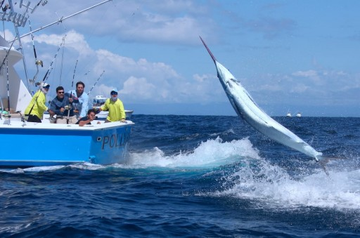 Tropic Star Lodge Annual Billfish Tournament Results