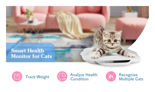 CatLink Announces Launch of WeCare - A Smart 24/7 Health Monitor for Cats