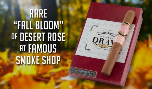 Rare 'Fall Bloom' of Desert Rose at Famous Smoke Shop