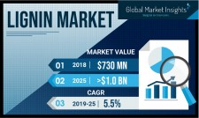 Lignin Market Forecasts 2019-2025
