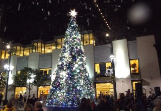 Santa Monica Tree Lighting Event and Live Special Effects by TLC Creative