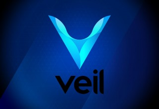 The Veil Project Logo 2