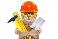 Cat Service, an msds service company