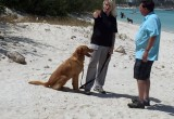 Tracy Sargent and Chance on Aruba Beach with Dave Holloway
