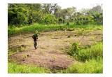 Coopecuan degraded farmland in Costa Rica