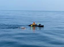 Bergman Swimming Across Santa Monica Bay