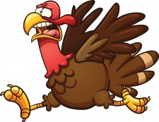 Don't Be A Debt Consolidation Turkey!