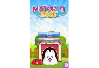 Match It Fast