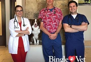 Bingle Vet Clinics Franchise