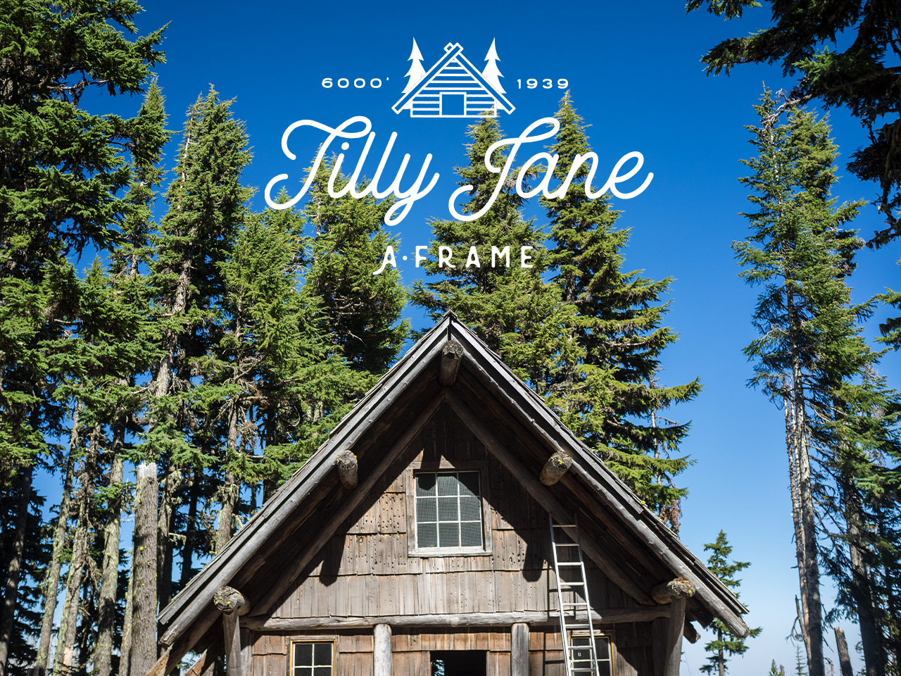 Save Tilly Jane Fundraiser, Hood River   Newswire