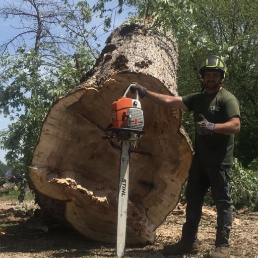 Windsor, McGraw Tree service has won the 2020 Three Best Rated® award for one of the Top Tree Services