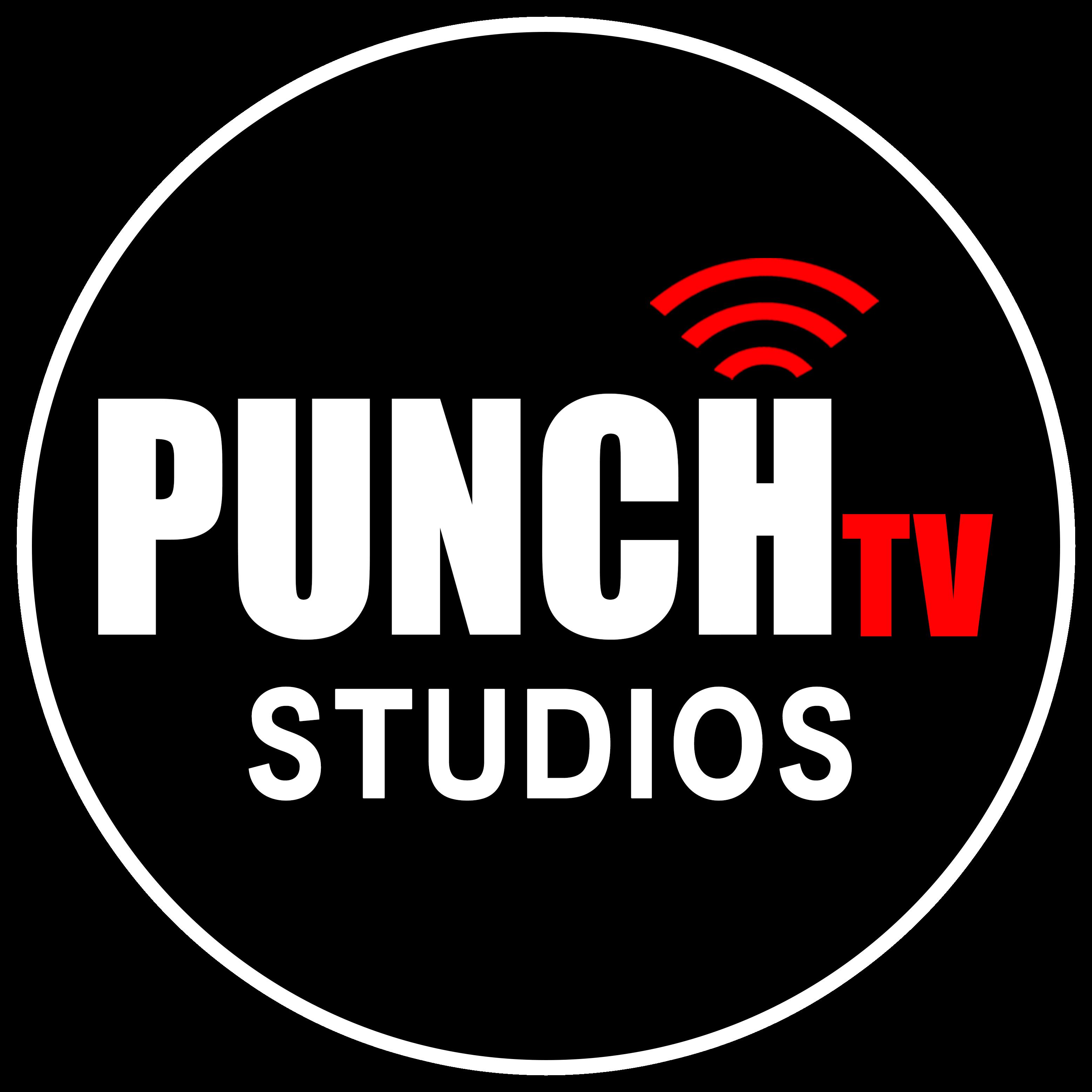 Punch tv ipo prospectus