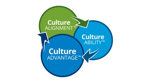 Global Culture Consulting Firm Experiences Lead Cultural Transformation Process