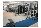 Dedicated Free Weight Area
