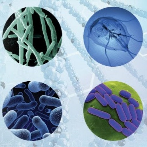xTAG® Gastrointestinal Pathogen Panel (GPP) Now Available Through Accu Reference Medical Lab