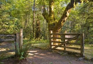 Barlow Road Tollgate on the Oregon Trail