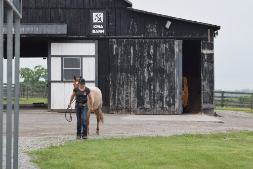 Greatmats Hosts 'Make My Barn Great' Photo Contest for New Stall Mats