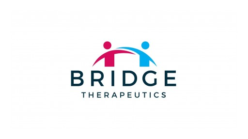 Pharmaceutical Startup, Bridge Therapeutics, Announces It is Funding a Mini-Documentary That Will Educate the Public on the Dangers of Opioids