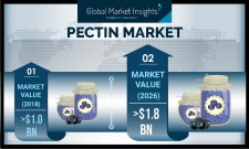 Global Pectin Industry 2019-2026