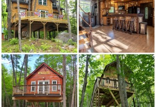 Three Incredible Live-In Treehouses