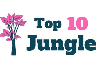 Top 10 Jungle