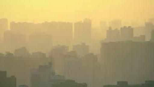 Ashton Whiteley: Steel Output Drops as China Fights Smog