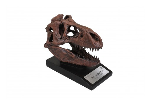 Toynk Toys Announces Upcoming Release for Smithsonian T-Rex Fossil Replica