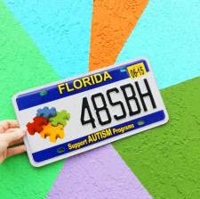 Florida Autism License Plate Sales Funds Available for Non-Profit Grants