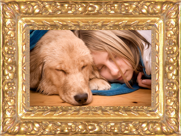 Eli Wilner & Company Launches the Ultimate Photo Framing iPhone and ...