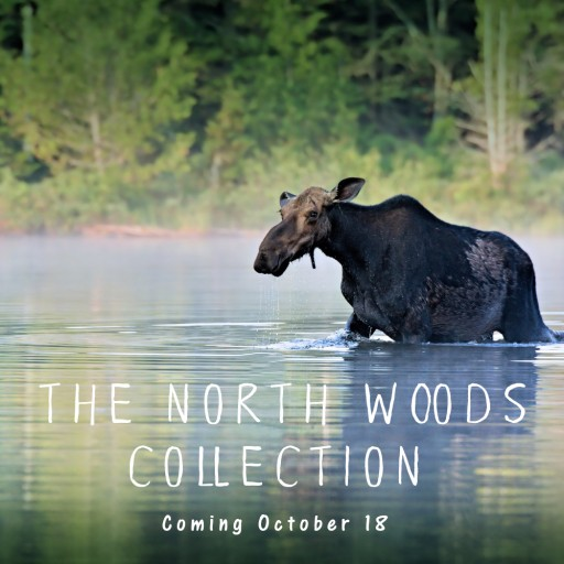 After 23 Introduces the North Woods Collection, Their Newest Handbag and Accessories Line